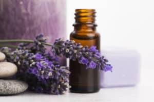 Oil bottle with Lavender plant